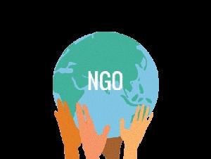 Non Govt Organisation